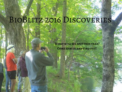 BioBlitz 2016 Discoveries!.png