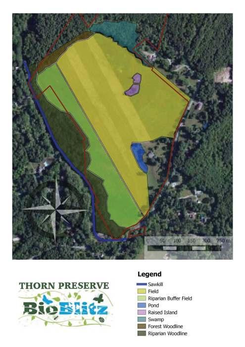 ThornAllEcotypes boundary